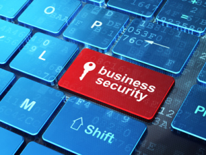 Business Security - wordpress update and backup service